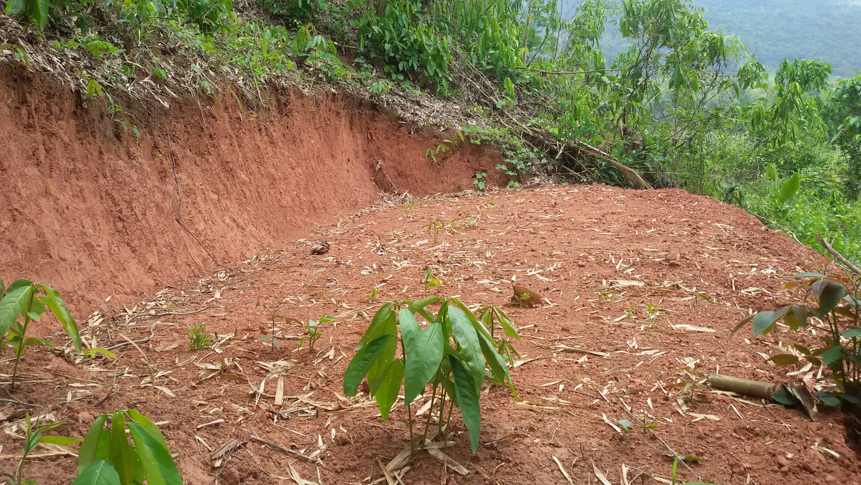 การพัฒนาแหล่งน้ำขนาดเล็ก และกระจายน้ำสำหรับกิจกรรมการเกษตรและใช้ในการอุปโภคบริโภค